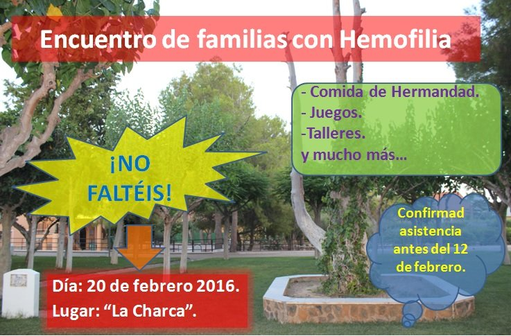 Encuentro Familias Hemofilia 1